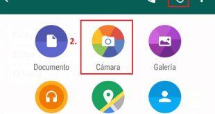 Whatsapp-Gif-1-1024x716